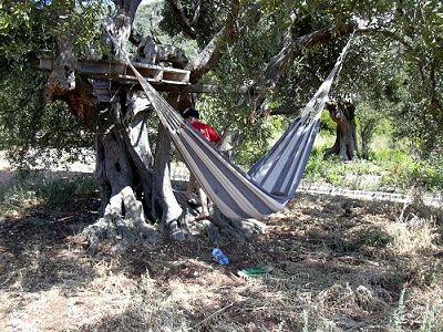 """Robinsonurlaub"""" in Kroatien und seine Folgen, von Markus Köchle"""