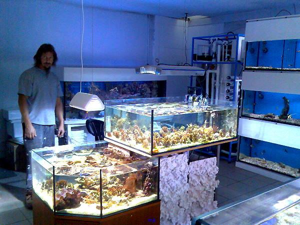 ahlona aquarium in n rnberg. Black Bedroom Furniture Sets. Home Design Ideas